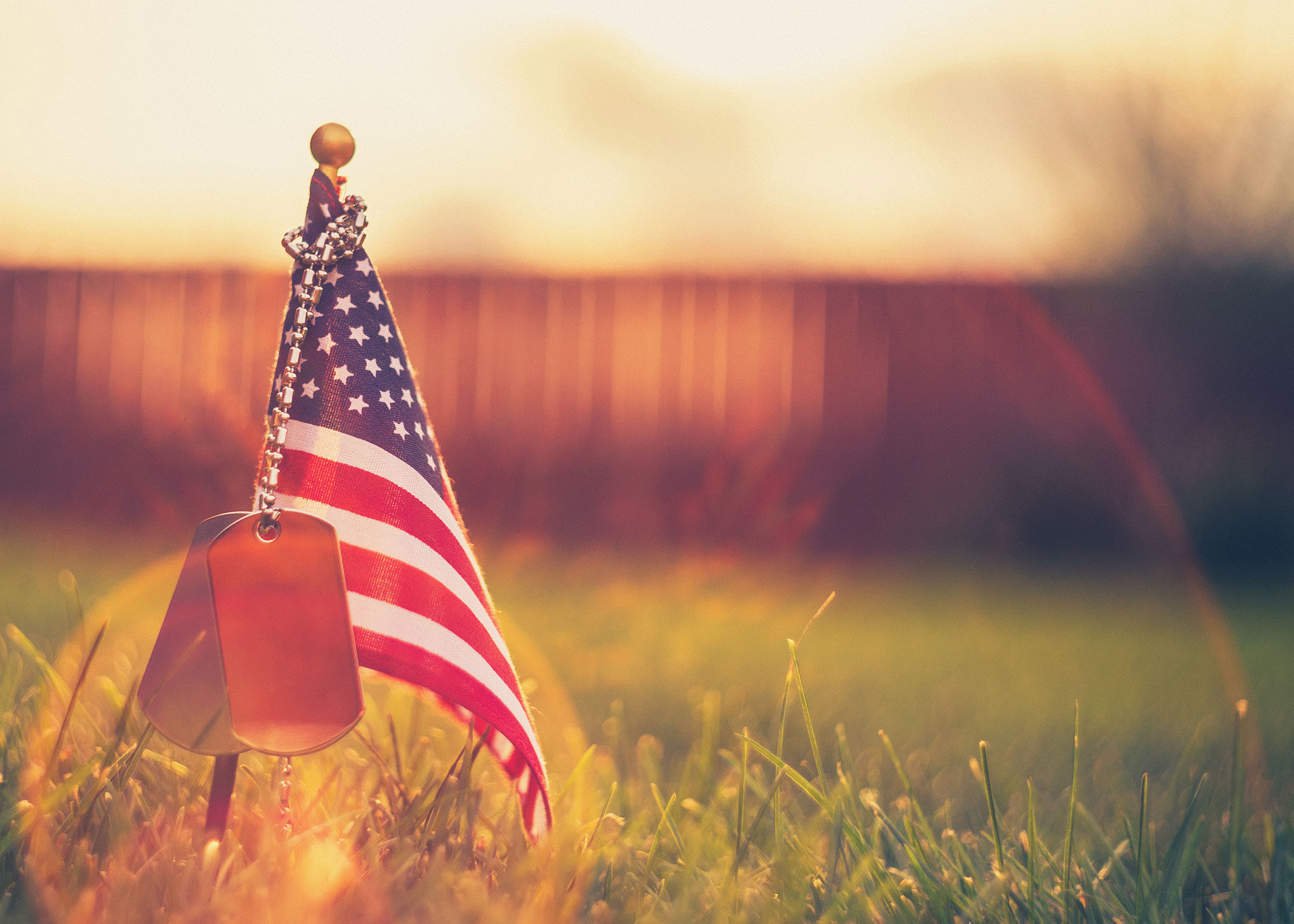 All Gave Some. Some Gave All | Simplifying the Market